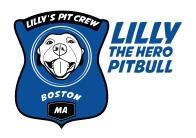LILLY_LOGO copy